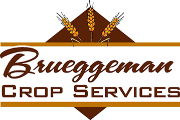 Brueggeman Crop Insurance